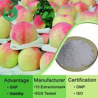 Fruit Juice Powder/Fruit Powder/Organic Freeze Dried Fruits Powder