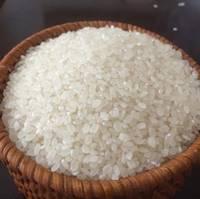 new stock Long Grain White Rice 5% - 10% - 15% - 25% - 100% Broken for sale