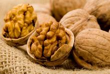 First grade and High quality Walnut Kernels with free sample