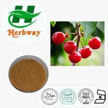 HerbwayAcerola cherry P.E. Vc