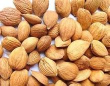 apricot nuts