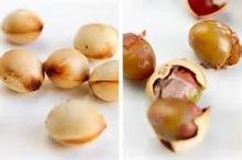 Roasted Ginkgo Nuts