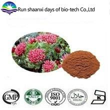 ISO Factory Supply Natural Rhodiola Rosea Extract 3% Rosavins 1% Salidroside