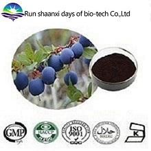 ISO Factory Supply Natural Bilberry Extract Powder 25% Anthocyanidins