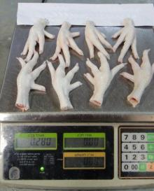 Whole Frozen Chicken and Chicken Parts / CHICKEN FEET CHICKEN PAW
