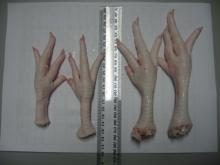 Chicken feet / Chicken paws / Whole Chicken / Chicken wings