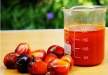 Refined and Crude Palm Oil for sale.