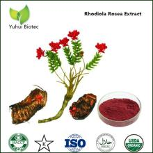 rhodiola rosea extract 3% salidroside,rhodiola rosea extract,organic rhodiola rosea extract