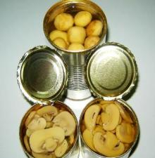 Canned Salty Champignon Mushroom preserved