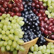 fresh grape for sale