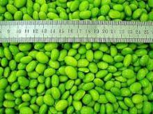 Frozen Soybean kernels