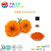 natural colour  xanthophyll  food additives pigments