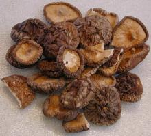 2016 Healthy and Delicious Dried Shiitake/ shiitake nutritious mushroom