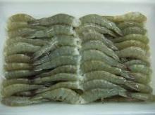 Frozen Farmed White Shrimp Vannamei Headless Shell