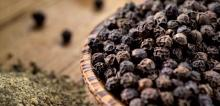 Best Quality Dried Black Pepper