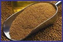 Supply Soybean meal / Soybean Meal, Soya Bean Meal concentrate poultry feed