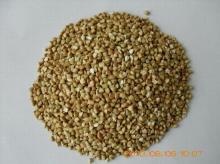 hulled buckwheat kenels