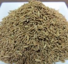 Black Cumin Seed Extract,Black Cumin Seed Extract Powder,Black Cumin Seed P.E.10:1 20:1