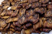 Dried Catfish available