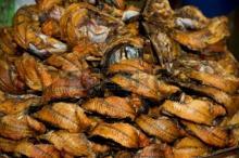 Smoked Fish Catfish Thailand
