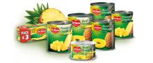 Canned pineapple (HACCP & ISO)