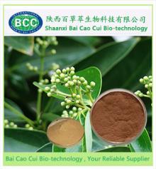 Cassia Bark Extract