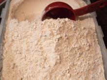 Premium Quality Wheat Flour