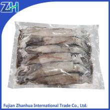 BQF vacuum packing illex squid for tuna bait