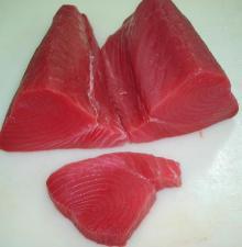 Frozen   Tuna   Loin  Fillet