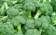 Best Fresh Broccoli