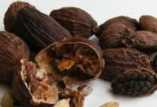 CARDAMOM MADE IN THAILAND BROWN