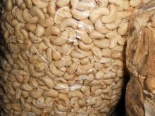 Cashew Nut Kernels WW320
