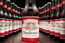 Botttle budweiser Beer for sale