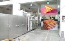 Wafer  Biscuit Machine Production Plant