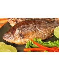 delicious looking tilapia fish available for sale