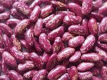 100% Black, red and white Kidney Beans for sale at cheap prices.