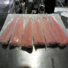 Frozen Chum Salmon Fillet