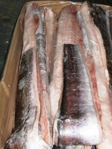 Frozen Conger Eel, HGT / Fillets 500/700, 700/1000, 1000/2000 grams