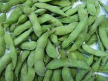 IQF   frozen  soybeans / soya beans  edamame  wholesale with kosher certificate $800 per mt cif