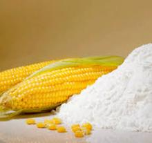 Corn Starch for sale