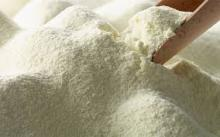 lactose powder food grade