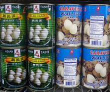 canned quail eggs in 425/850/3100ml tins or glass jar