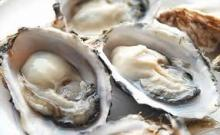 Fresh Coffin Bay King Oysters ( Wonderful Prices)