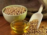 Refined and Crude Soy Beans Oil