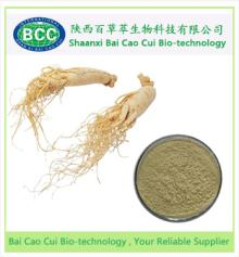 High Quality Panax Ginseng Extract, Ginsenosides 20% -80%