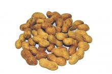 Roasted Peanut In Shell