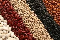 Kidney Beans ( White,Read,&Black),Mung Beans.