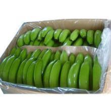 Fresh  Cavendish Banana Grade A