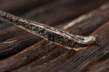 vanilla beans wholesale../
