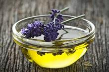 best price pure Lavander oil